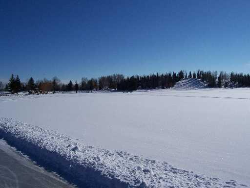 Calgary Feb 2007#3