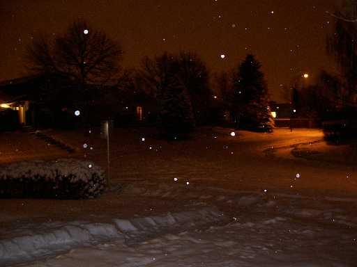 Snow Feb 2007Night