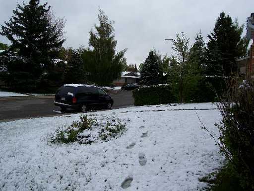 May 2007 Snow1